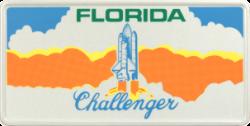 Funschild-USA Florida 303x153mm thumb