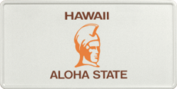 Funschild-USA Hawaii 303x153mm thumb