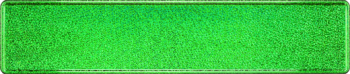 LKW Namensschild grün mit Glitzer 520x110mm thumb